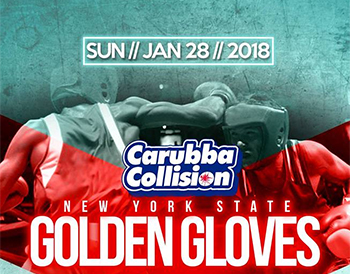 2018 Golden Gloves Feb